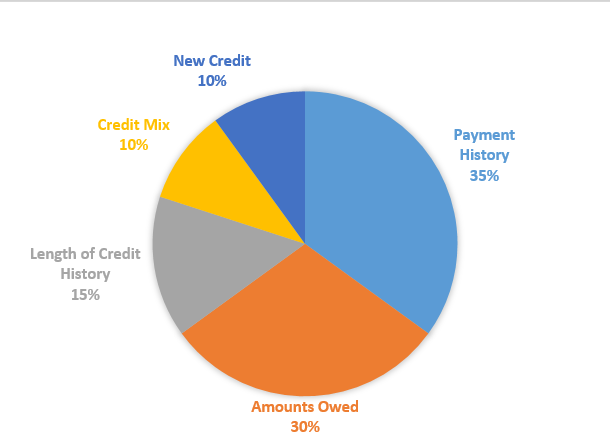 What Makes Up Your Credit Score?